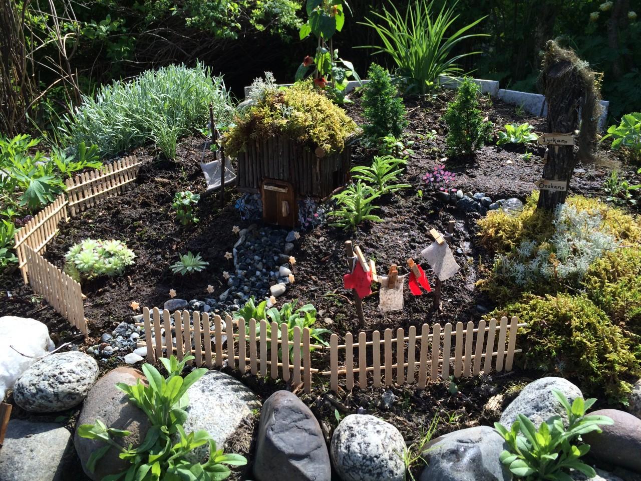 Мини сад в ландшафтном дизайне